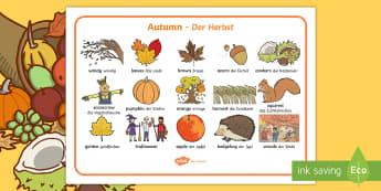 Autumn Word Mat English/German - EAL, German, Harvest, Autumn, seasons,  A4, display, harvest,  harvest festival, fruit, German-trans