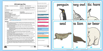EYFS Find the Penguin Adult Input Plan and Resource Pack - EYFS, Early Years planning, adult led, Lost and Found, Oliver Jeffers, polar regions, penguins.