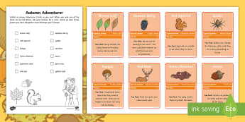 Autumn Adventurer Collector Cards - exploring, seasons, fall, outdoors, outdoor learning,Scottish, top trumps, scavenger hunt