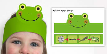 Bandiau Pen Cylchred Bywyd y Broga - Cylchred bywyd y broga, Cylch bywyd, broga, Broga, Frog, Frog Life cycle, lifecycle, bandiau pen, he
