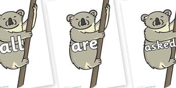 Tricky Words on Koalas - Tricky words, DfES Letters and Sounds, Letters and sounds, display, words