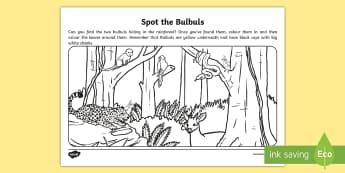 Spot the Bulbuls Colouring Page - Bulbul, Bahrain, Spot the Bulbul, Colouring, page, concentration
