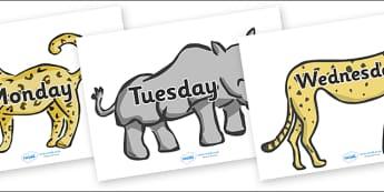 Days of the Week on Safari Animals - Safari Animal, Safari, Weeks poster, Months display, display, poster, frieze, Days of the week, lion, cheetah, puma, jaguar, rhino, hippo, elephant