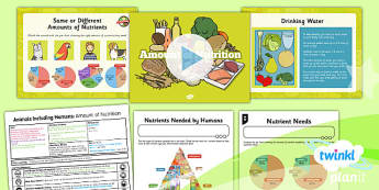 Science: Animals Including Humans: Amount of Nutrition Year 3 Lesson Pack 2