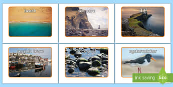 Beach Habitat  Display Photos - Seaside, Animals, Where, Live, Home, Real, Pictures, Coast