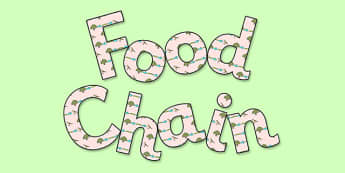 'Food Chain' Display Lettering - food chains, food chain, food chain lettering, food chain display, food chain display title, ks2 food chains, ks2 science