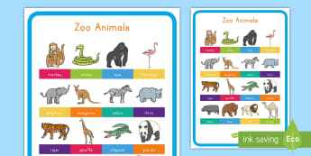 Zoo Animals Display Poster - Early Childhood Animals, Animals, Pre-K Animals, K4 Animals, 4K Animals, Preschool Animals, Zoo Anim