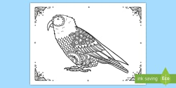 Kea Mindfulness Colouring Page - New Zealand Mindfulness, kea, colouring, kea colouring, mindfull, mindless