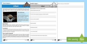 Lilieci - Fișe diferențiate de evaluare a competenței de lectură