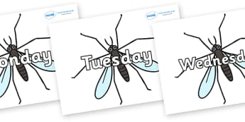 Days of the Week on Crane Flies - Days of the Week, Weeks poster, week, display, poster, frieze, Days, Day, Monday, Tuesday, Wednesday, Thursday, Friday, Saturday, Sunday