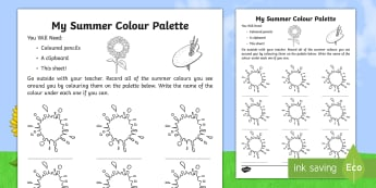 My Summer Colour Palette Activity Sheet - summer, season, activity sheet, worksheet, colour palette, observation, colours,Irish, worksheet
