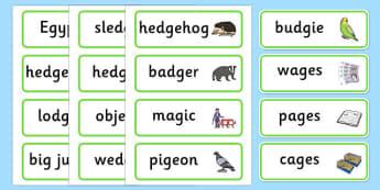 Medial 'j' Word Cards -speech sounds, phonology, articulation, speech therapy, dyspraxia