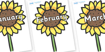 Months of the Year on Sunflowers - Months of the Year, Months poster, Months display, display, poster, frieze, Months, month, January, February, March, April, May, June, July, August, September