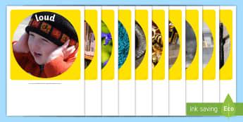 Sensory Words (Sound) Display Photo Cut-Outs - Australia, EYLF, senses, kindergarten, preschool, nursery, reception, pre-primary, prep, display, so