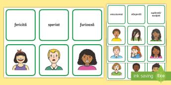 Emoții Cartonașe pereche - dezvoltare personală, inteligență emoțională, sentimente, comunicare, dezvoltare socială,Roman