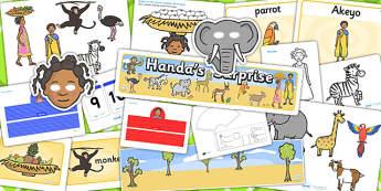 Childminder Handa's Surprise Resource Pack - child minder, books