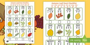 Autumn Leaf Hunt Checklist English/Mandarin Chinese/Pinyin - Autumn, seasons, september, october, topics, ks1, harvest, leaf, leaves, tree, EAL, Pinyin
