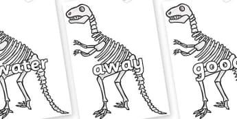 Next 200 Common Words on Dinosaur Skeletons - Next 200 Common Words on  - DfES Letters and Sounds, Letters and Sounds, Letters and sounds words, Common words, 200 common words