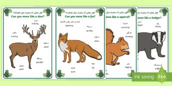 Woodland Animal Movement Cards Arabic/English - Woodland, forest, animals, fox, deer, rabbit, badger, bird, squirrel, movement, PD, physical develop