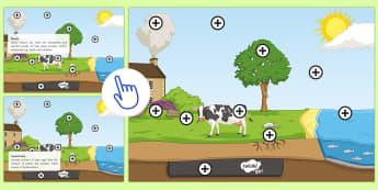 Carbon Cycle Picture Hotspot - KS3/4 Picture Hotspots, carbon cycle, respiration, photosynthesis.