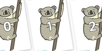 Numbers 0-100 on Koalas - 0-100, foundation stage numeracy, Number recognition, Number flashcards, counting, number frieze, Display numbers, number posters