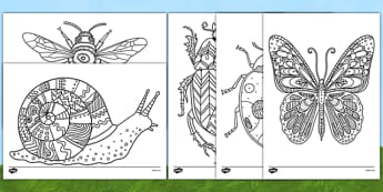 Minibeast Themed Mindfulness Colouring Sheets - butterfly, minibeast, mindfulness, colouring, sheet, colour, stress relief, calm, de-stress