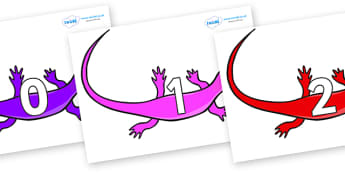 Numbers 0-50 on Skink Lizards - 0-50, foundation stage numeracy, Number recognition, Number flashcards, counting, number frieze, Display numbers, number posters