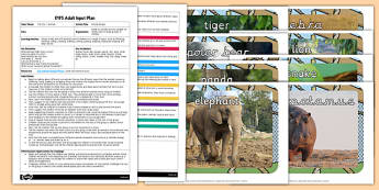 EYFS Animal Boogie Adult Input Plan and Resource Pack - EYFS, Early Years planning, adult led, animals, zoo, movement, PE, PD, Physical Development.