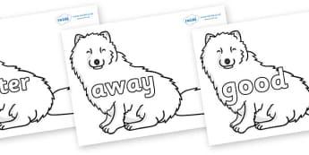 Next 200 Common Words on Arctic Foxes - Next 200 Common Words on  - DfES Letters and Sounds, Letters and Sounds, Letters and sounds words, Common words, 200 common words