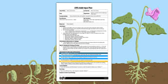 Beans Action Song EYFS Adult Input Plan - EYFS planning, adult led, early years, jack and the beanstalk, jasper's beanstalk