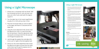 Using a Light Microscope Student Instruction Sheet Print-Out - Investigation Help Sheet, science practical, method, instructions, light microscope, how to use, mic