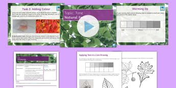 Tone Lesson 5: Natural Forms  - tone, colour, sketch, blend, leaf