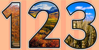 Autumn Themed Photo Display Numbers - autumn, display, numbers