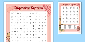 Digestive System Word Search - digestive system, word search, digest, stomach, intestines, science