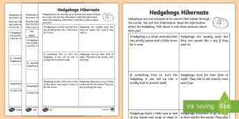 The Story of the Hedgehog Differentiated Activity Sheets - hedgehog, hibernation, activity sheets, differentiated, reading, drawing,Irish