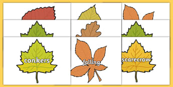 Autumn Topic Words on Leaves - Word cards, Autumn, seasons,  A4, display, autumn pictures, autumn display, leaves, acorn, conker, atumn