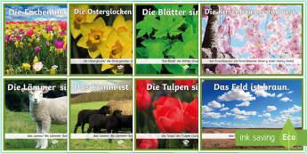 Colours in Spring Display Posters German - Spring, Colours, German, Seasons, Frühling, deutsch