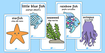 The Rainbow Fish Movement Activity Picture Cards Romanian Translation - romanian, rainbow fish, movement, activity