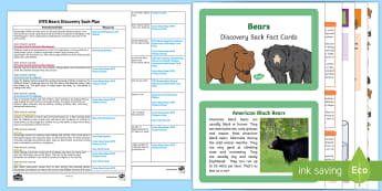 EYFS Bears Discovery Sack Plan and Resource Pack - brown bear, discovery