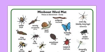 Minibeast Word Mat Polish Translation - polish, minibeast, word mat, word, mat