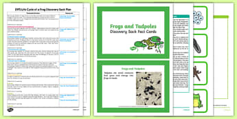 EYFS Life Cycle of a Frog Discovery Sack Plan and Resource Pack - frog, life cycle, discovery sack