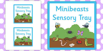 Minibeasts Themed Sensory Deep Tray Label - tray label, minibeast