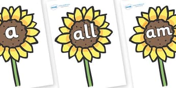 Foundation Stage 2 Keywords on Sunflowers - FS2, CLL, keywords, Communication language and literacy,  Display, Key words, high frequency words, foundation stage literacy, DfES Letters and Sounds, Letters and Sounds, spelling