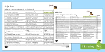 French Adjectives Choose the Right One Activity Sheet - French, translation, grammar, adjective, comparative, superlative, demonstrative, indefinite, posses