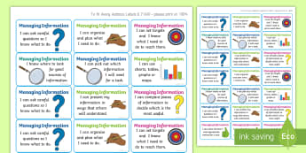 NI Thinking Skills and Personal Capabilities Managing Information Success Criteria Stickers - comments, targets, curriculum, marking, statements, Northern Ireland