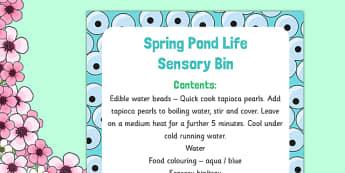 Spring Pond Life Sensory Bin - EYFS frogspawn, tadpoles, frogs, lifecycle