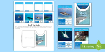 Shark Themed Top Cards Game - Home Education Lapbooks, Top Trumps, Great White Shark, Sharks Game