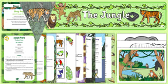 Childminder Jungle and Rainforest EYFS Resource Pack - Jungle and Rainforest, amazon, africa, forest, animals, child minder, childminding,