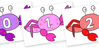 Numbers 0-100 on Crab to Support Teaching on Sharing a Shell - 0-100, foundation stage numeracy, Number recognition, Number flashcards, counting, number frieze, Display numbers, number posters