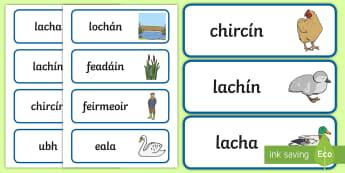An Lachín Bheag Ghranna Word Cards - An Lachín Bheag Ghranna, the ugly duckling, gaeilge, word cards, words, cards
